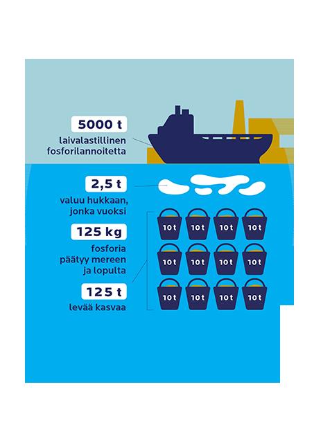Kuvitteellinen esimerkki havainnollistaa lannoitteen laivakuljetuksiin liittyvää päästöriskin mittaluokkaa. Arvion mukaan 0,05 % lastista voi päätyä hävikkinä mereen. Jos lannoite sisältää 5 % fosforia, se tarkoittaa 125 kg verran fosforia yhdestä laivasta. Meressä 1 kg fosforia kiihdyttää levien kasvut yhden tonnin.