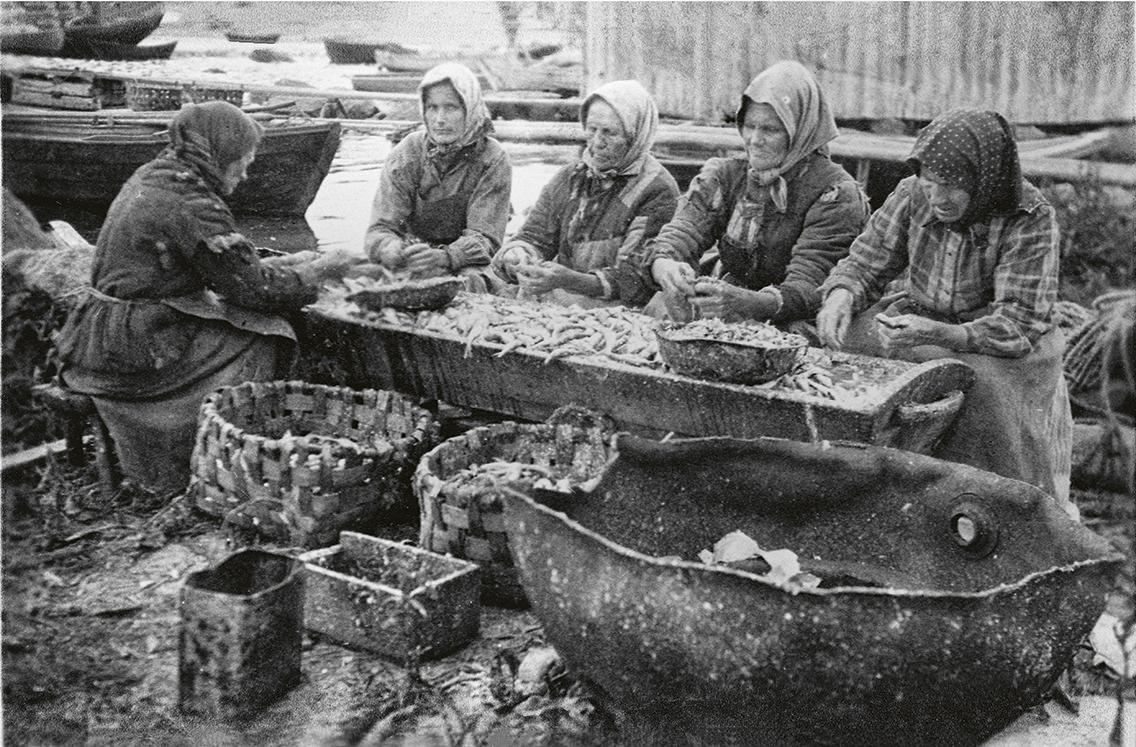 Ulkosaariston naisten arkeen kuului kalankäsittely. Kuljetusastioiksi kelpasivat niin kaukalot, pärekorit, laatikot kuin miinankuoretkin. (Kuvateksti kirjasta) Kuva: Kymenlaakson museo